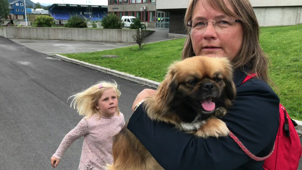 Hundeeierne om sine hunderaser
