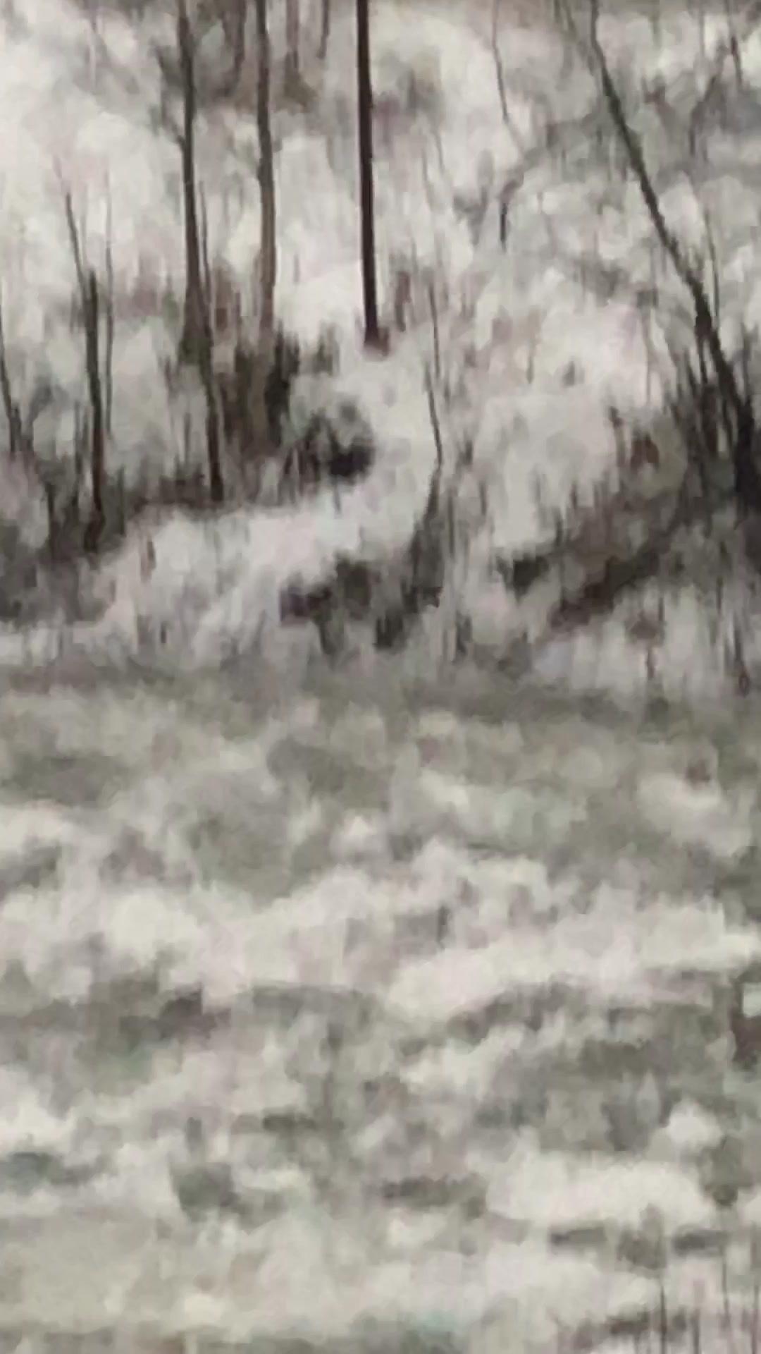 Isgang i Beiarelva i november