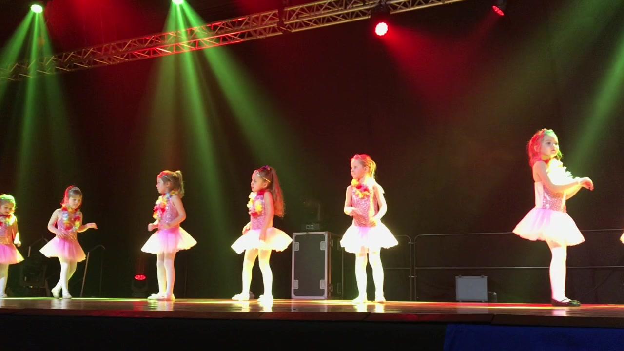 Dans Fauskes danseshow